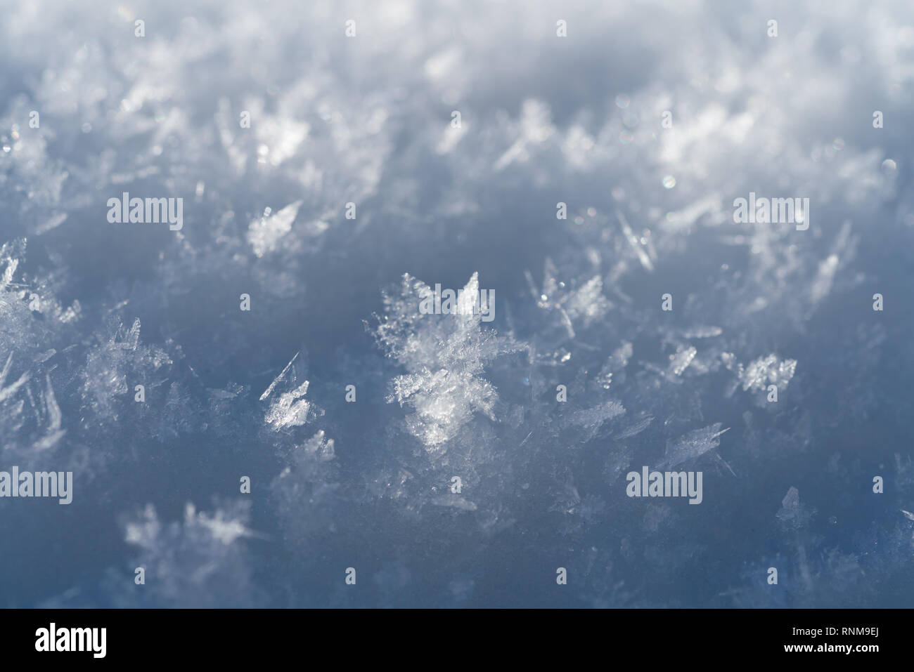 Snowflakes Close Up Abstract on a sunny day Stock Photo