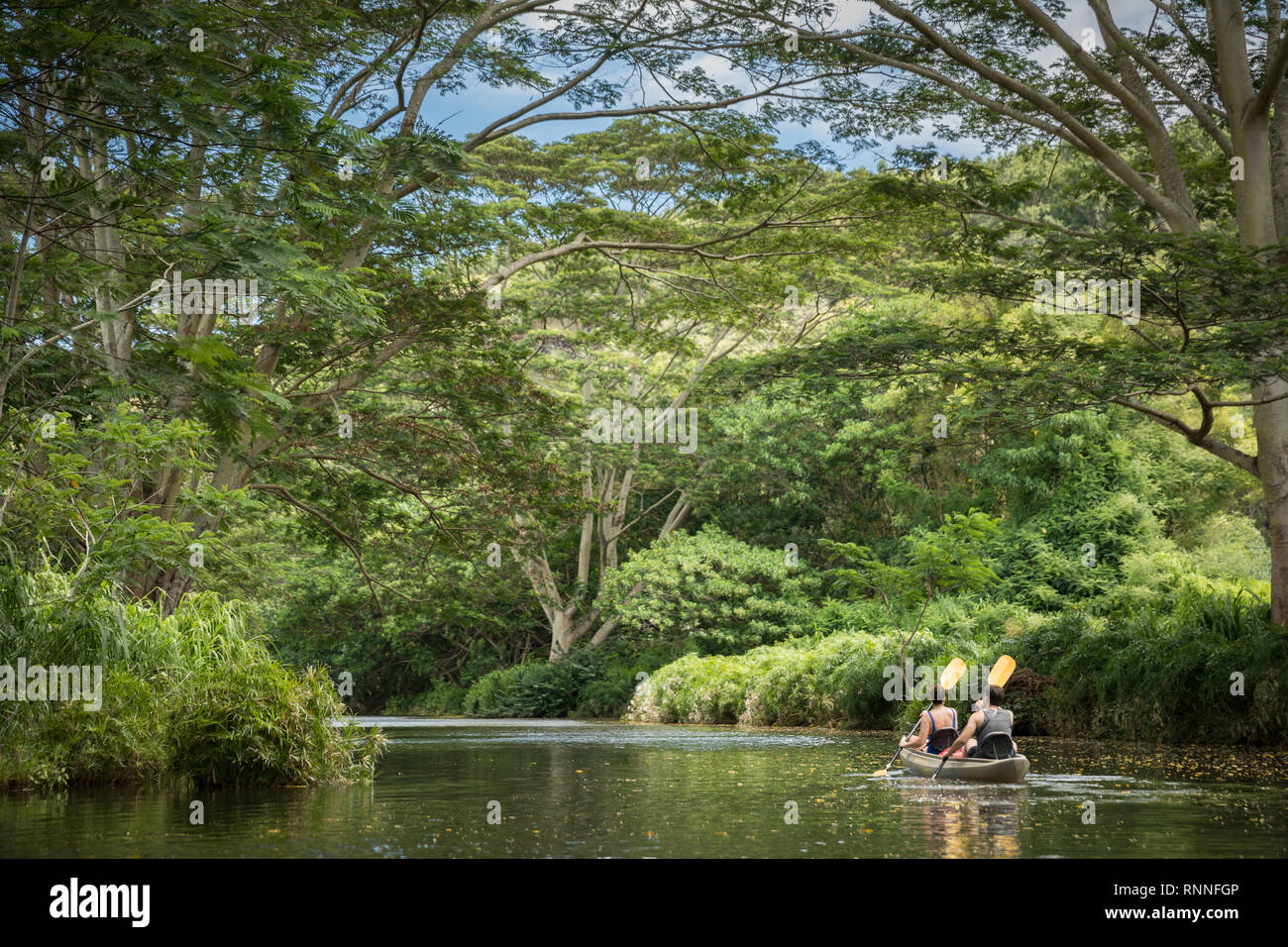 The Wailua River, Wailua, Kauai, Hawaii, is a popular and scenic place to enjoy exploring by kayak and hikes to various sites along the river. - Stock Image