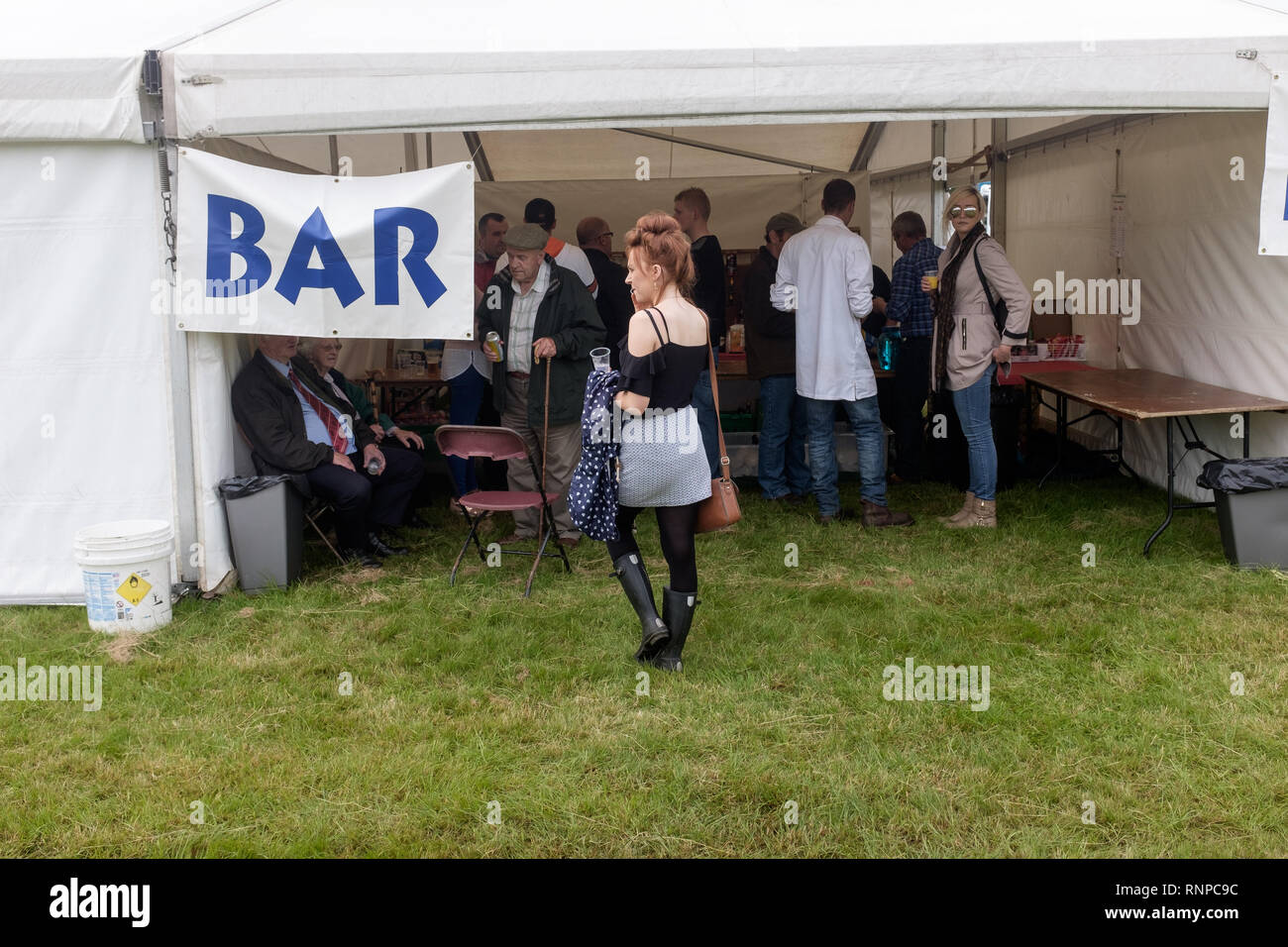 Young woman holding drink viewed from behind, standing in front of local agricultural show beer tent - Stock Image