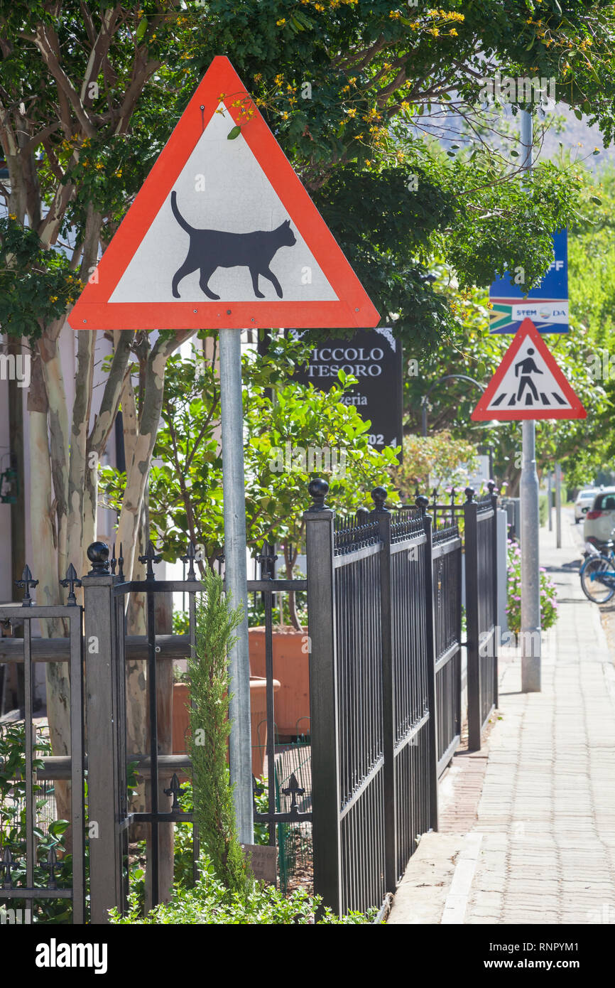 Street  signs in Montagu, Western Cape, South Africa, one warning for Cats Crossing and one for a Pedestrian Crossing - Stock Image