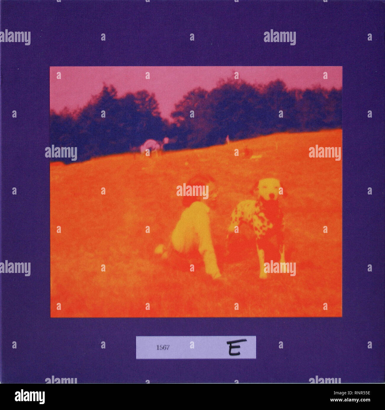 Eels Blinking Lights And Other Revelations Vintage Cover Album Stock Photo Alamy