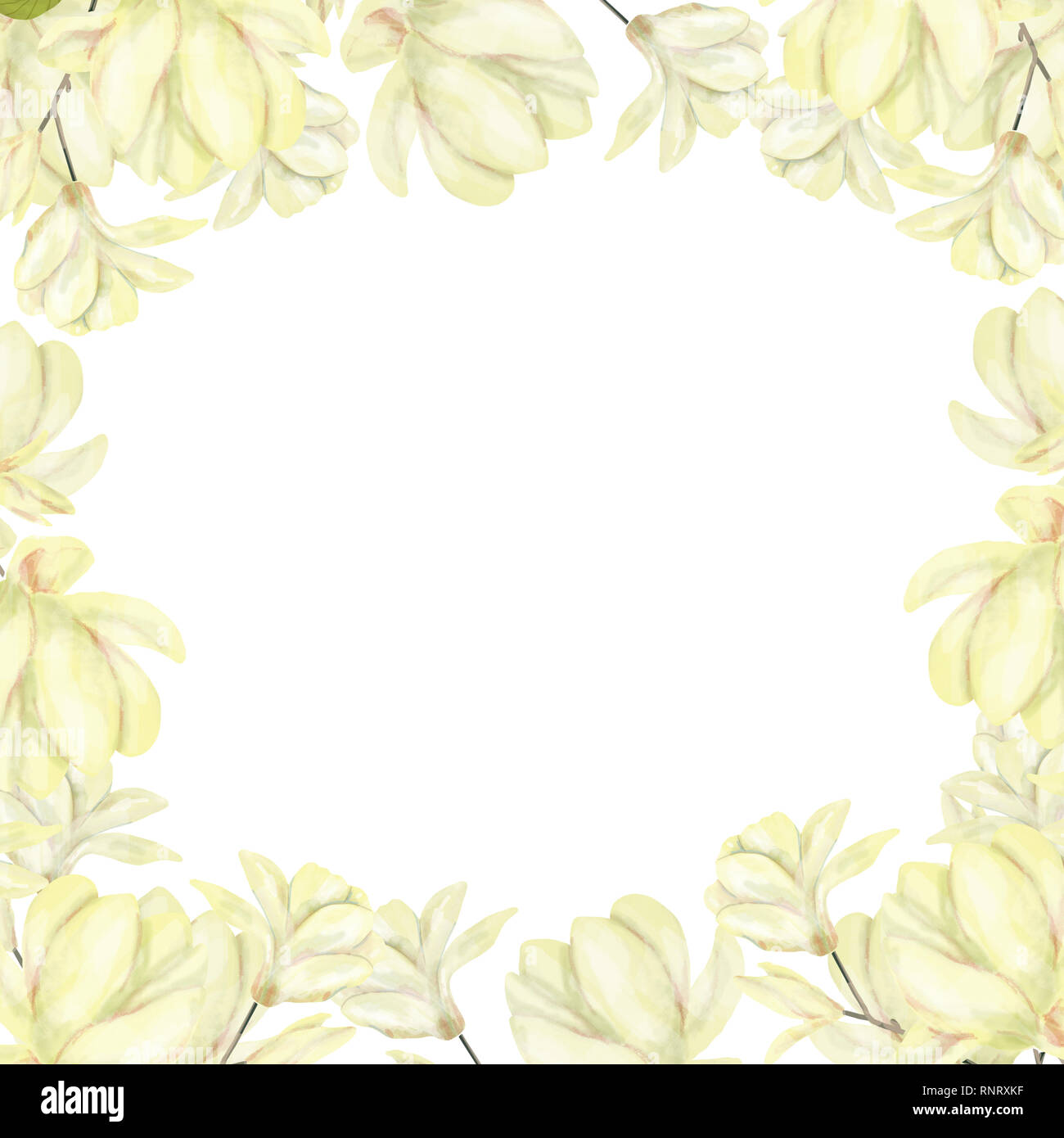 Wedding Invitation, floral invite card, olive floral and magnolia geometric golden frame print. White background - Stock Image