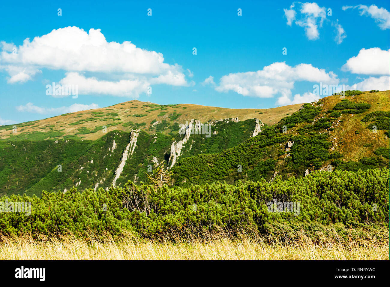 Panoramic view of the rocky mountains of the Carpathians, Ukraine. Beautiful view of the Montenegrin ridge. Stock Photo