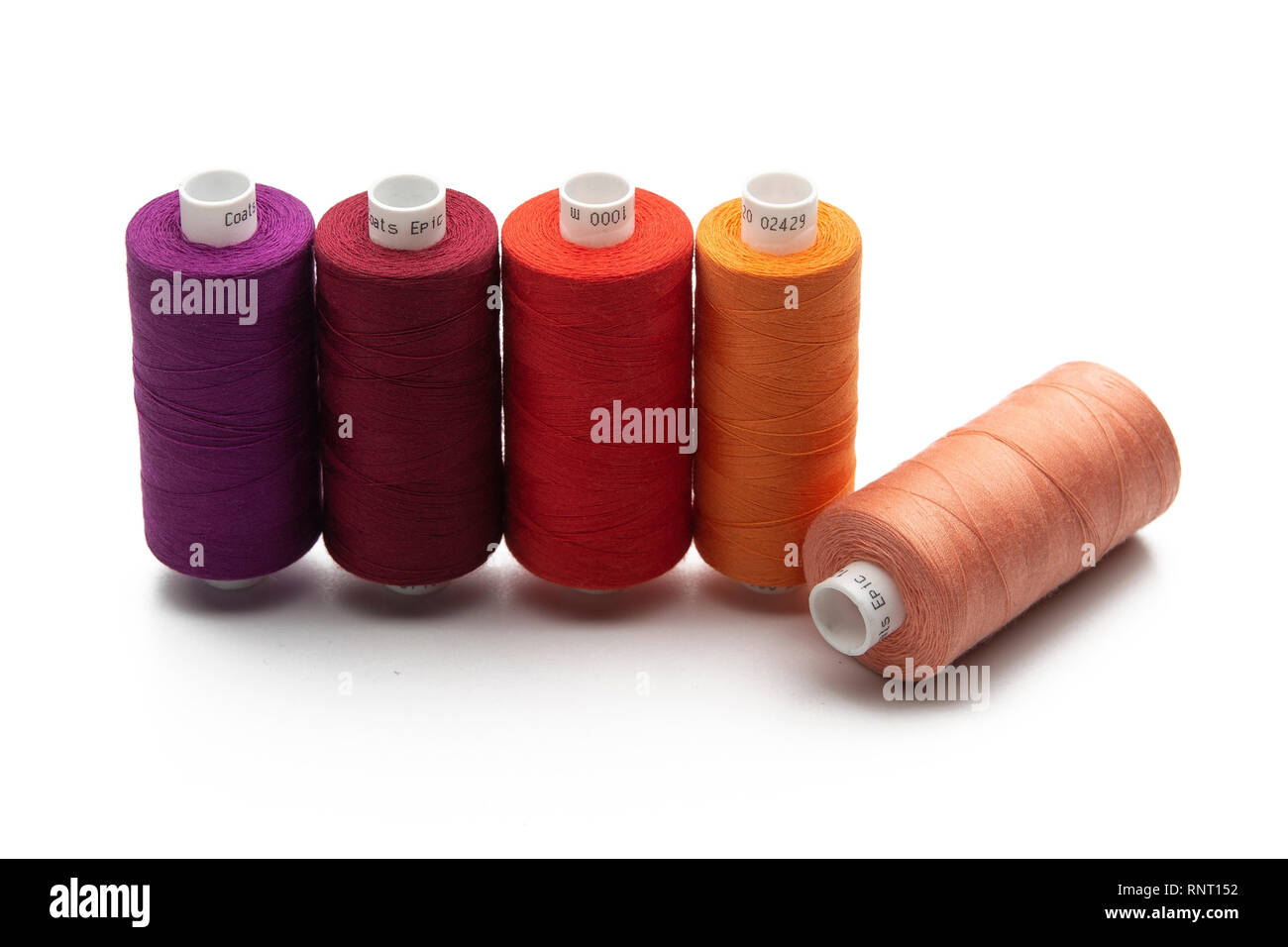 Set of color spool  sewing threads on isolated white background - Stock Image