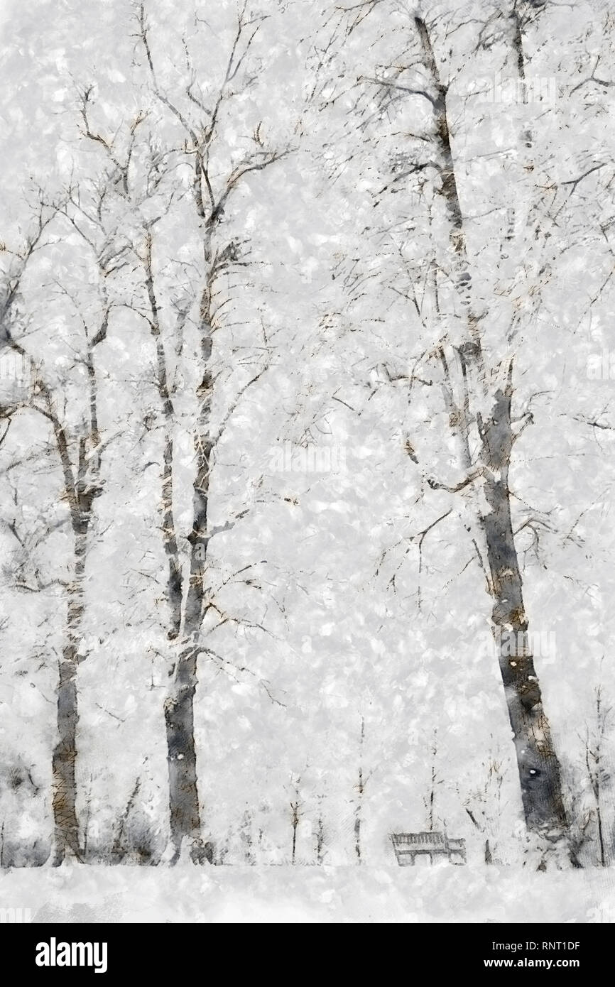 Christmas card style painterly illustration of a winter scene with trees and bench in the snow Stock Photo