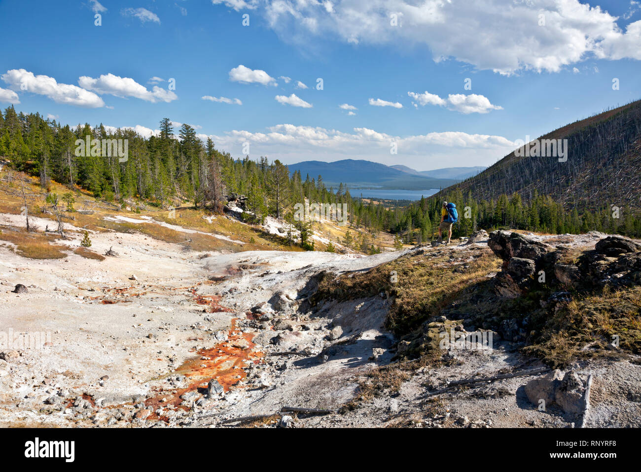 WY03818-00...WYOMING - Hiker at the Upper thermal area along the trail to Heart Lake and the Heart Lake Geyser Basin in Yellowstone National Park. - Stock Image