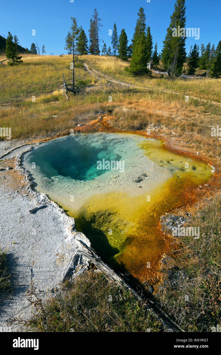 WYOMING - Colorful hot spring right next to the trail in the Middle Group of the Heart Lake Geyser Basin in the backcountry of Yellowstone. - Stock Image
