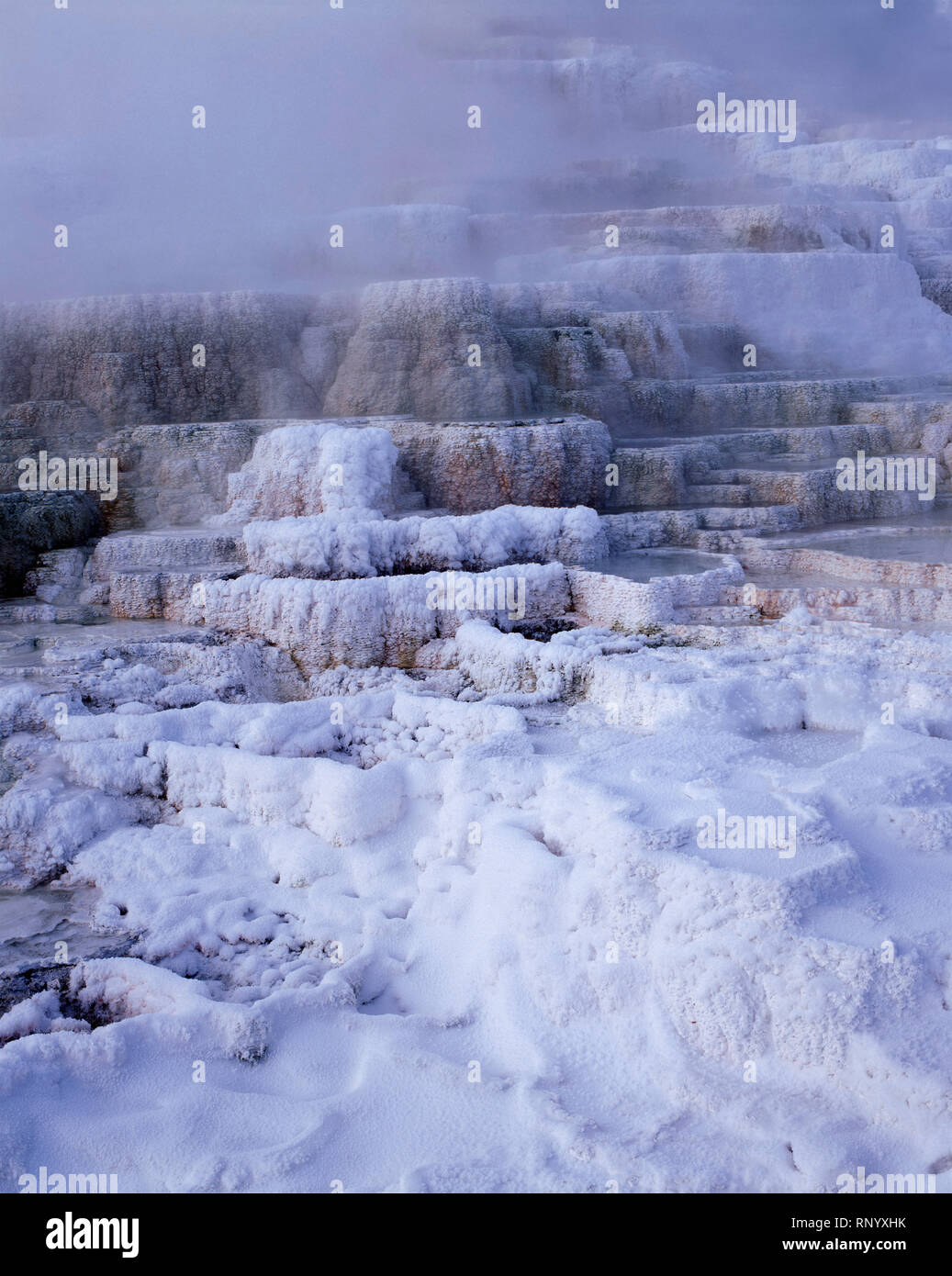 Usa Wyoming Yellowstone National Park Winter Snow And