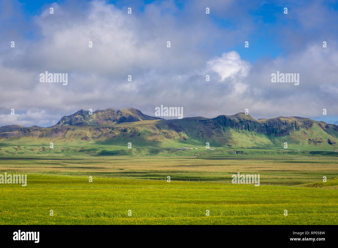 Summer view near Dyrholaey promontory in Iceland - Stock Image