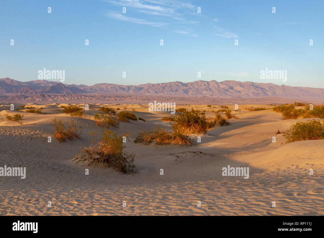 Mesquite Flat Sand Dunes, Death Valley National Park, California, United States. - Stock Image