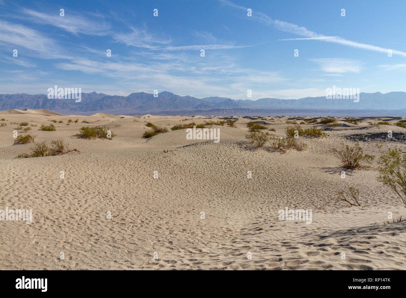 View across Mesquite Flat Sand Dunes, Death Valley National Park, California, United States - Stock Image