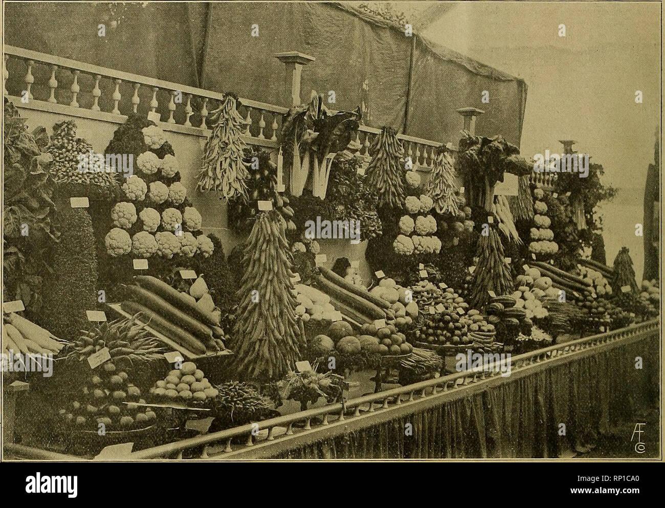 Mrs E T Stock Photos & Mrs E T Stock Images - Alamy