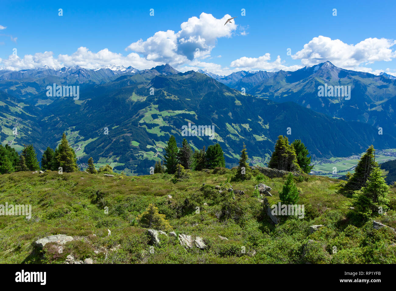 Summer mountain landscape with blue cloudy sky and hang glider. Austria, Tyrol, Zillertal Valley, Zillertal High Alpine Road. Stock Photo
