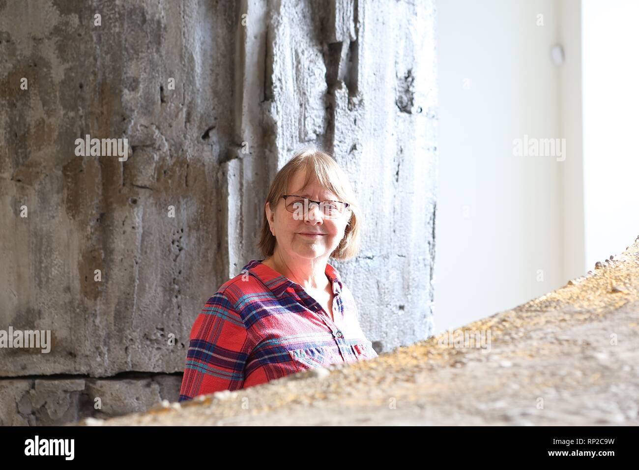 Phyllida Barlow RA Cul de sac - Stock Image