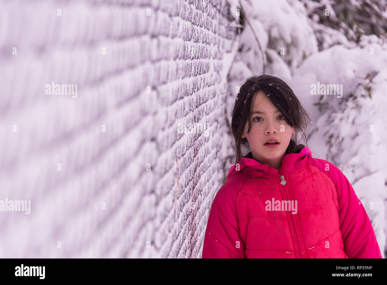Young Asian girl in pink coat standing next to snow covered fence - Stock Image