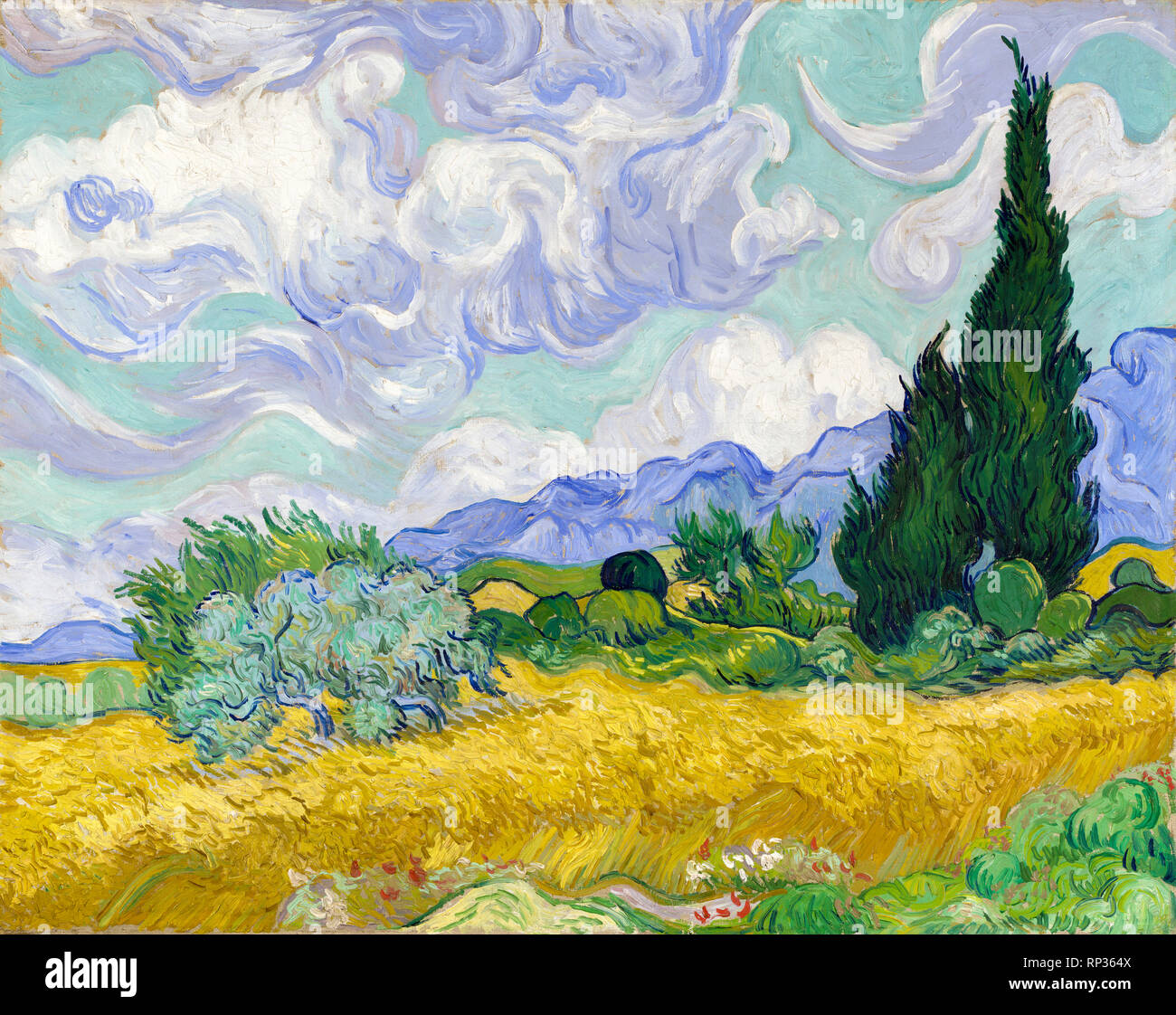 Wheat Field with Cypresses, Vincent Van Gogh, 1889, painting - Stock Image