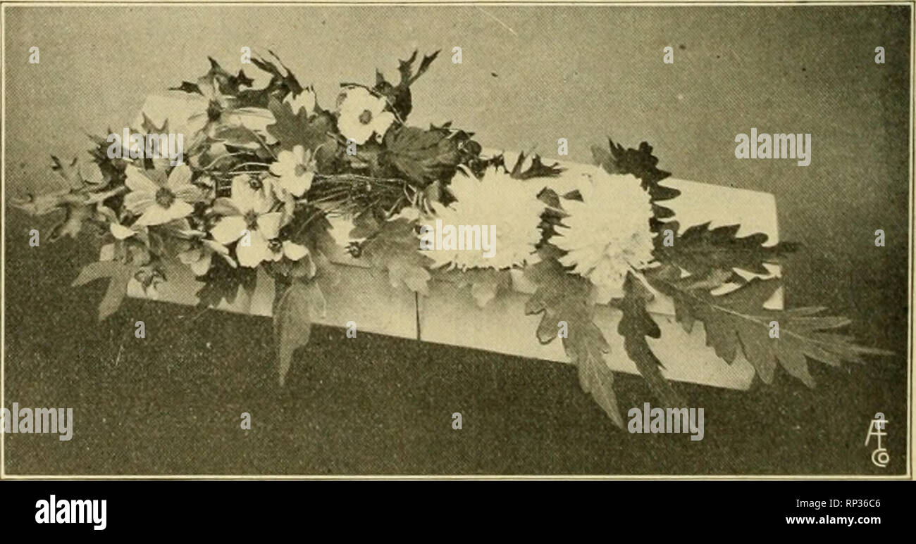 c49438ed4c07 . The American florist   a weekly journal for the trade. Floriculture   Florists. 318 The American Florist. Mar. 4