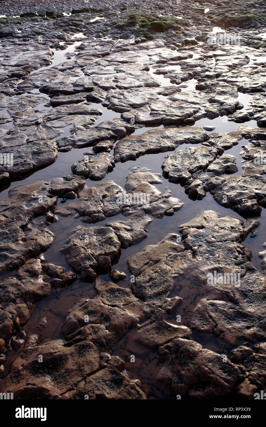 Coastal, Erosion, debris, on the, beach, pipes, cracks, cliffs, lower, greensand, wealden, beds, geology, Compton, Bay, Isle of Wight, UK, - Stock Image