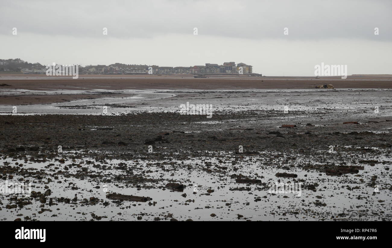The Exe Estuary, overcast day - Stock Image