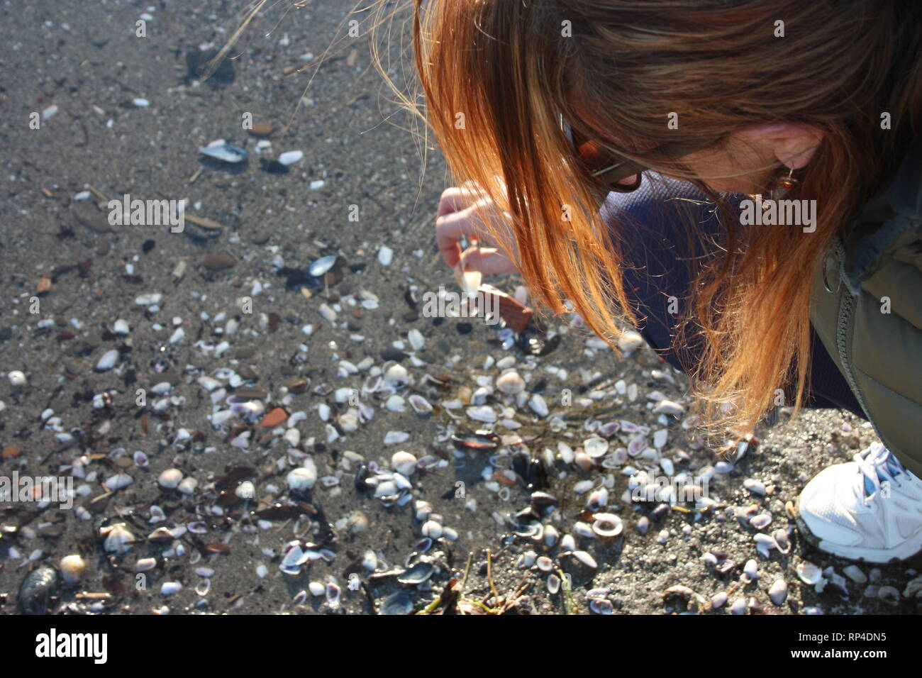 unidentified woman bends over the beach to collect shells in the sand - Stock Image