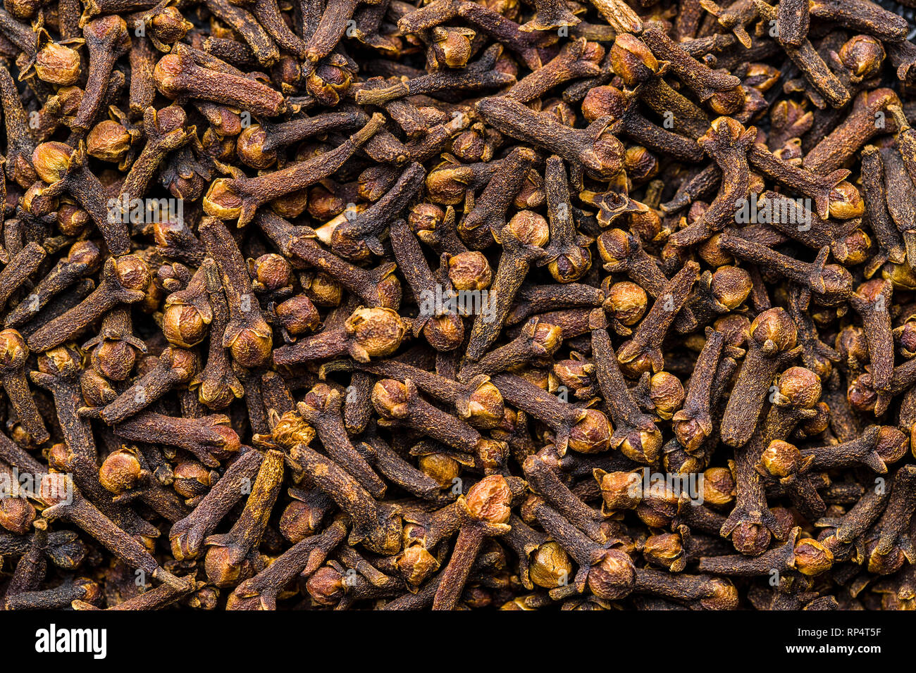 Carnation, dried clove spice. Top view. - Stock Image
