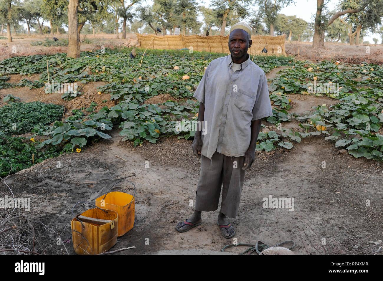 NIGER, Sahel, Zinder, village Baban Tapki, food security project by Caritas, vegetable garden  /NIGER Zinder, Projekte Ernaehrungssicherung im Dorf Baban Tapki, Gemuesegarten - Stock Image