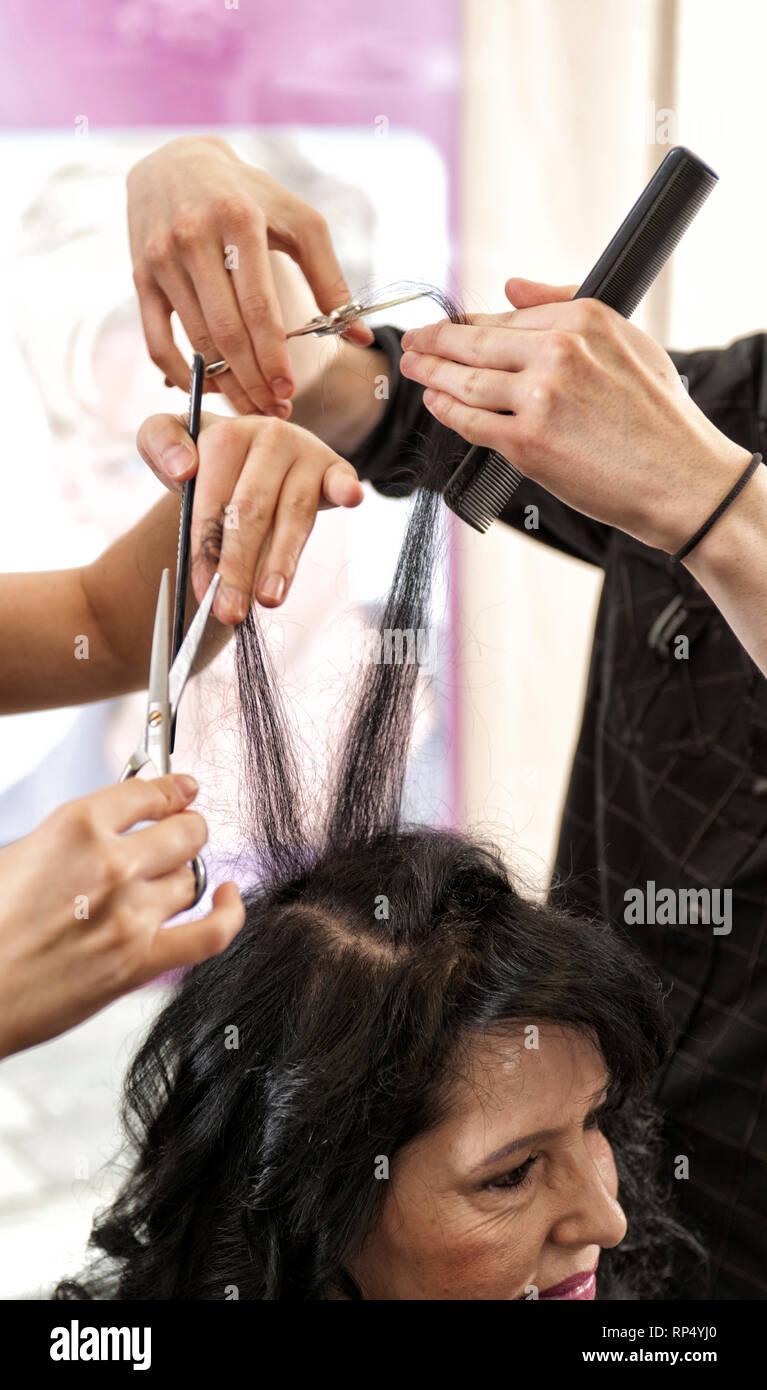 Zwei Paar Haende mit Schere und Kamm, bearbeiten die Haare einer Kundin. [(c) Dirk A. Friedrich - Stock Image