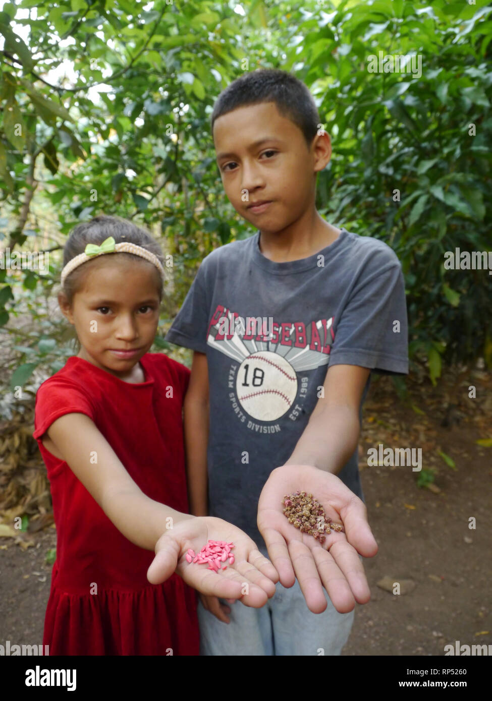 Nicaragua  FEDICAMP projects. Los Encuentro Rio Abajo. House and garden of Maria Urania Perez (38). Children holding cucumber and cabbage seeds. - Stock Image