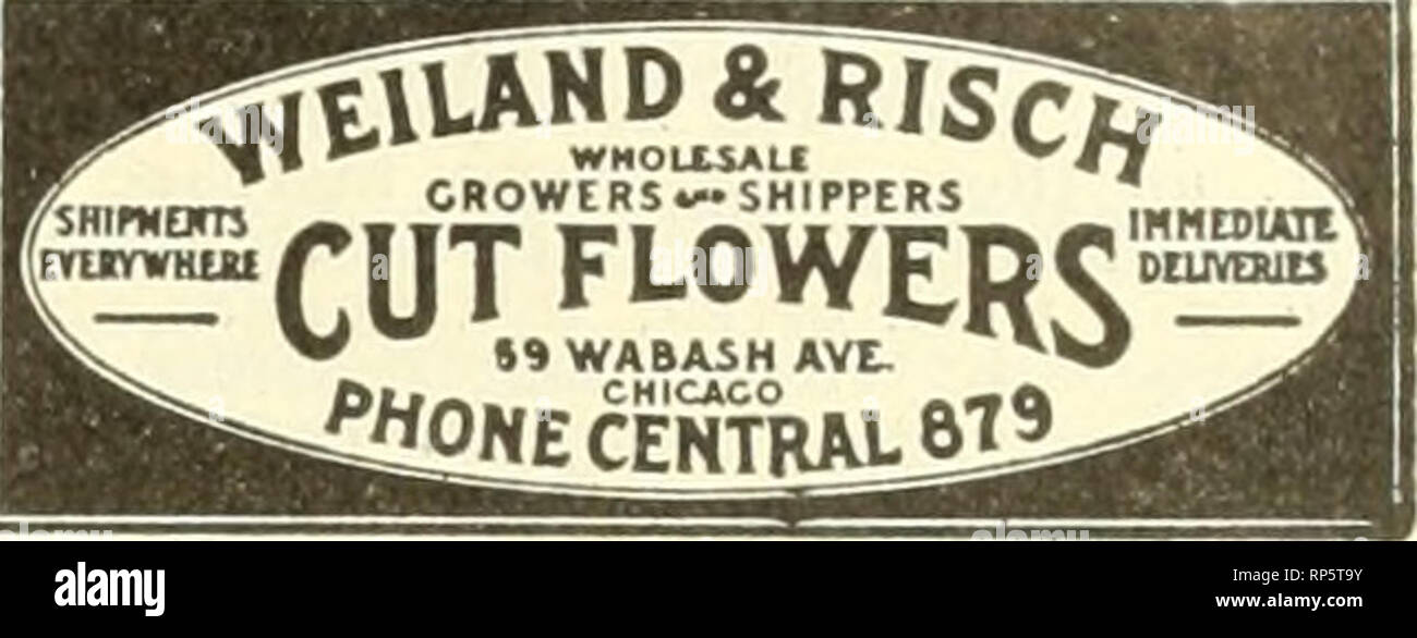 . The American florist : a weekly journal for the trade. Floriculture; Florists. 'p//. The American Florist. 211 Cut Flowers | E. H. HUNT FOR ALL OCCASIONS. FLORISTS* SUPPLIES TOO. -SEND FOR PRICl LI8T.- 76 Wabash Avenue, CHICAGO KENNICOTT BROS. WHOLESALE CUT FLOWERS 48-60 Wabash Ave., ChlCaaO L. D. Phone, Central 466. '*'??? ^ »? Jf v W* will have aoTthloe in tha line of CUT FLOWERS and GREENS HOERBER QROS. Wholesale Growers of Gut Flowers, Telepbone Randolpb 2758. Greenhouses DES PLaines, ILL. Store. 51 Wabash Avenue CHICAGO I Percy Jones 1 I 60 Wabash Ave., CHICAGO j The American Metal Box  - Stock Image