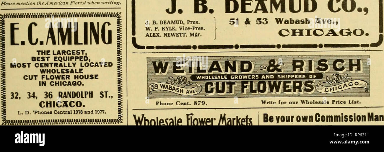 """. The American florist : a weekly journal for the trade. Floriculture; Florists. igo6 The American Florist. 925 E. H. Hunt, WnOLESALt Cut flowers """"THE OLD RELIABLE."""" 76 Wabash Ave, -CHICAGO Please mention th^ American Flotist when writing. Wc arc prepared to fill ALL ORDERS. I SEND FOR PRICE LIST. I J. B. DE3IV1UD CO., J. B. DEAMUD, pres. ] 51 & S3 Wabash 7(ve>t W. p. KYLE, Vice-Pres. !? ^-^-b^w-m-*-^ j^ d^^f^ ALEX. NEWETT. Mgr. 