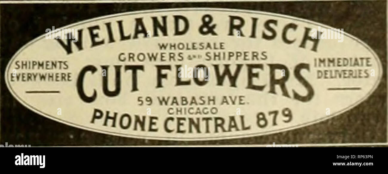 The American florist : a weekly journal for the trade  Floriculture