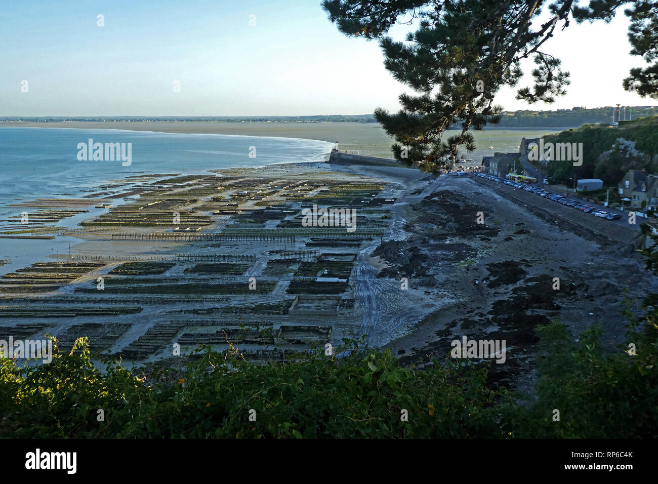 Cancale, oyster beds, Bretagne, Brittany, Ille-et-Vilaine, France, Europe Stock Photo
