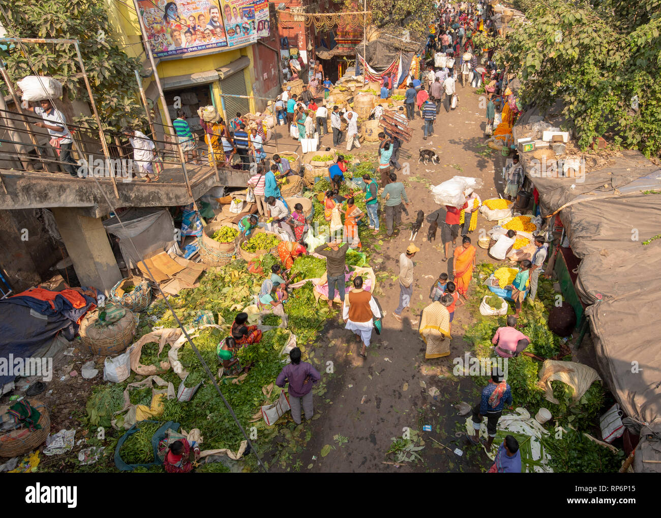 Aerial view over part of the Mullick Ghat Flower Market on a sunny day with crowds of local people sellers and buyers. - Stock Image