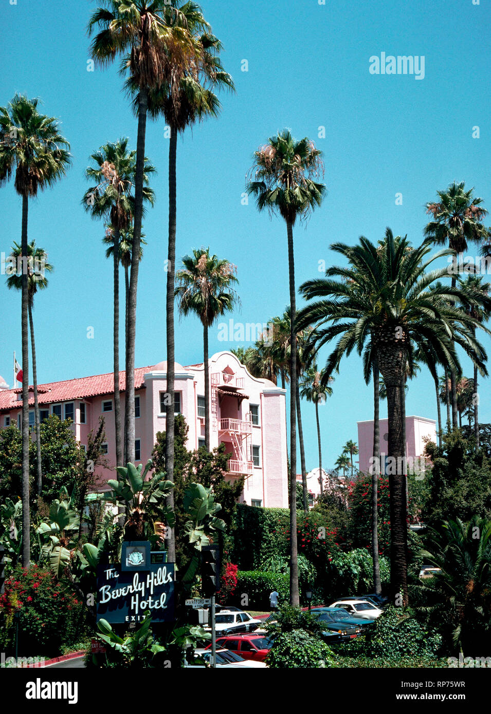 Towering palm trees frame some of the pink facade of the famous Beverly Hills Hotel that has been the home away from home for movie stars and other celebrities since it opened in 1912, which was two years before its namesake city of Beverly Hills was incorporated in Los Angeles County, California, USA. Today the luxurious hotel is known as the Pink Palace and has 210 guest rooms and 23 secluded bungalows surrounded by 12 acres (4.86 hectares) of lush tropical gardens and exotic flowers. Hollywood stars are often seen in its premier dining spot, the Polo Lounge. - Stock Image