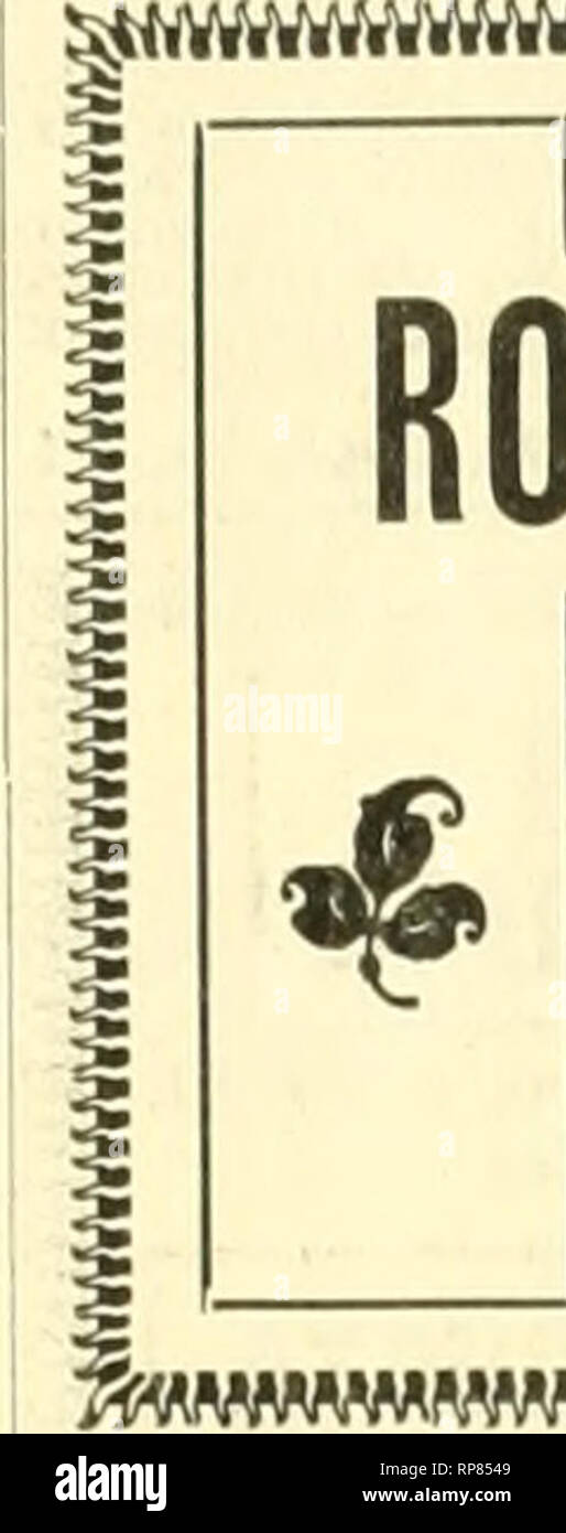 """. The American florist : a weekly journal for the trade. Floriculture; Florists. 'goo. The American Florist. 1285 I.,,. ,1 .. .1 ?????????????????????????????????????????????????????? 21/-In. Stock. ROSE PLANTS FROM 2!^.-IN. POTS. OOlDf N GATE. $3.50 per 100. i KAISERIN. $3.00 per 100.  PERU, $3.00 per 100.  PETER REINBERG, 51 Wabash Avenue, tHICA'iO. P •I'-u (I'M' IP «i""""i' i»'i""""i' iiT'i* « 'r*i» «i M-'MMp V V/dAC mrnfion the Amencan FioriU wfien jvtilinp-. FINE R05ES We offi-r the following surplus stock of Roses roni 4-ln. pots, all healthy and wintered in cold onst's, at $12 per - Stock Image"""