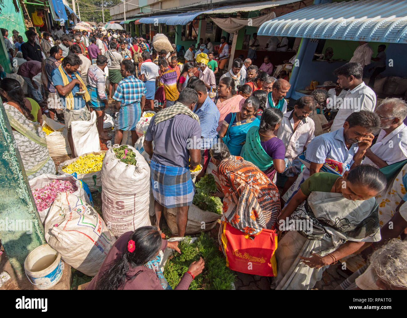 A view showing busy bustling people, locals trading buying selling of flowers at the Madurai flower market in India. - Stock Image