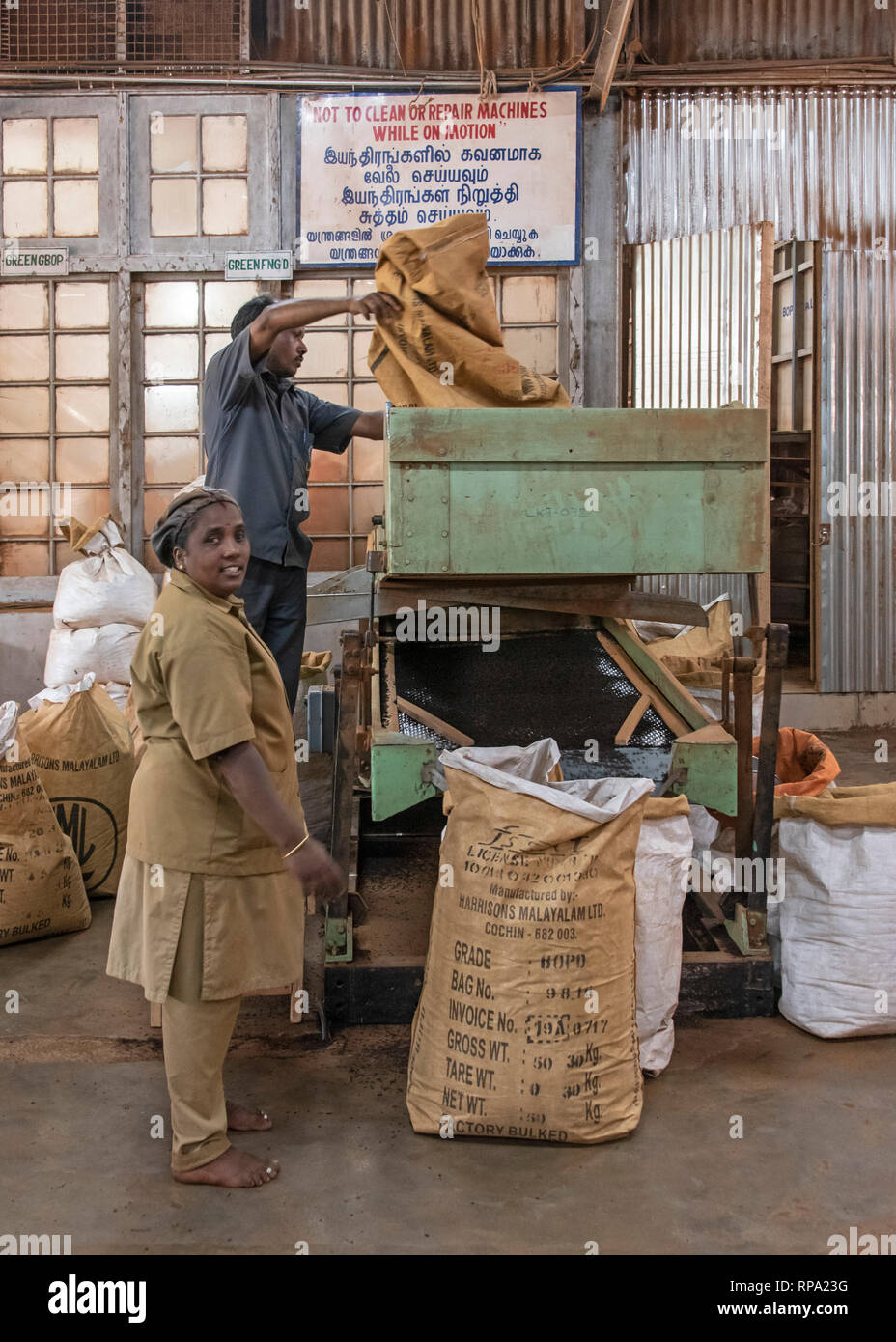 Workers at work in the Lockhart tea factory using traditional methods and machinery.  This is the packing process. - Stock Image