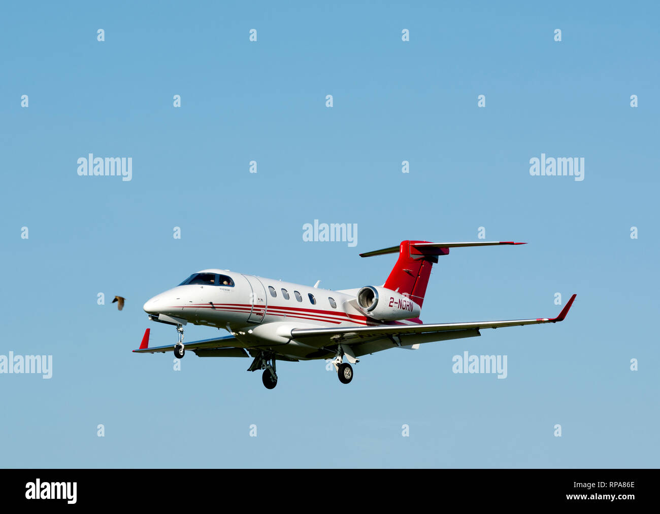 Embraer Phenom 300 at Wellesbourne Airfield with Skylark flying, Warwickshire, UK (2-NORN) - Stock Image