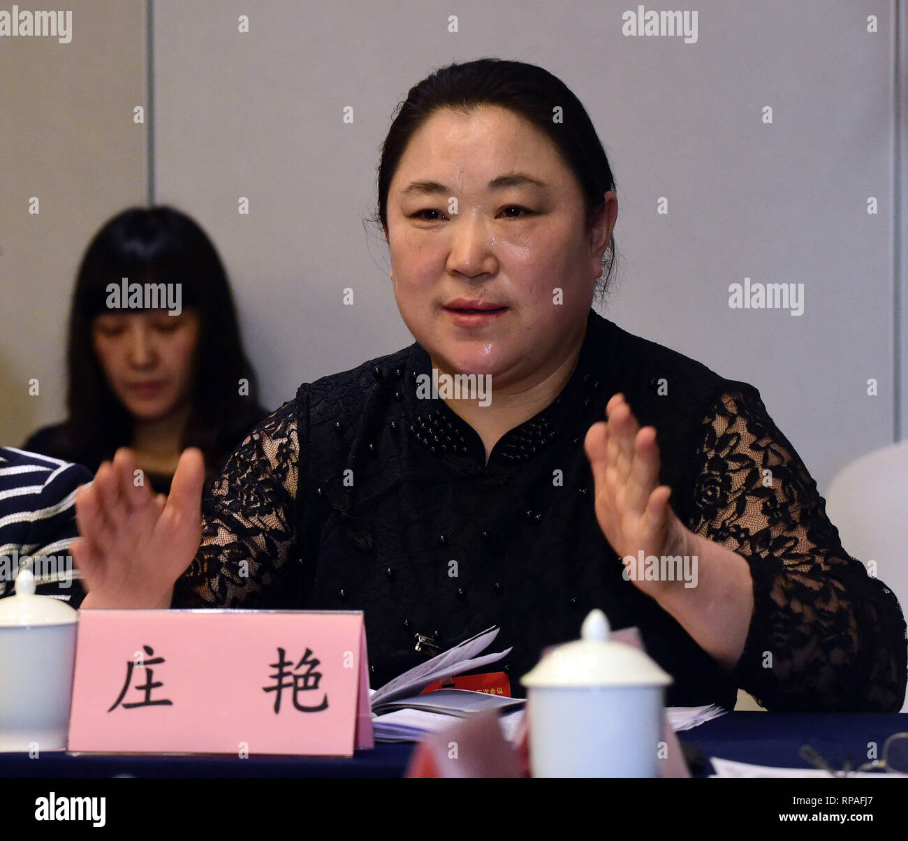 (190221) -- ANSHAN, Feb. 21, 2019 (Xinhua) -- File photo taken on March 6, 2017 shows Zhuang Yan, deputy to the 12th National People's Congress (NPC), speaking on a panel discussion with other deputies from northeast China's Liaoning Province in Beijing, capital of China. Zhuang Yan, 47, is a sanitation worker with Hengjie Sanitation Company in the Lishan District of Anshan city.     In addition to performing well in her own work, Zhuang always thinks about how to better play her role as an NPC deputy.      Whenever she goes to a northern city, Zhuang pays much attention to local curbs and the - Stock Image