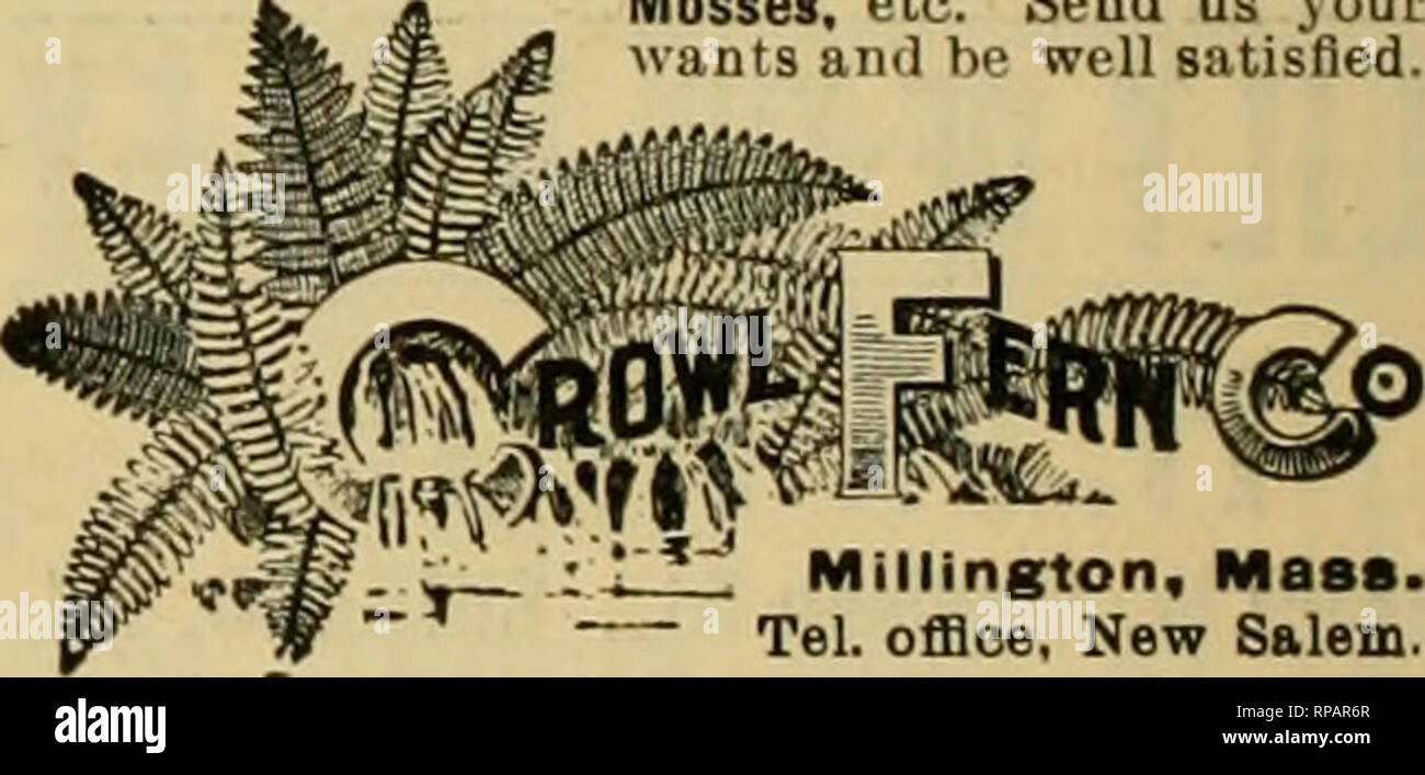 """. The American florist : a weekly journal for the trade. Floriculture; Florists. 44 The American Florist. Aug. 8, SAMUEL S. PENNOCK. Beauties* Openfrom7:30am.to6pm. WholCSalC FlOflSt, coTotstXat.""""/:. 1612 Ludlow St.. PHILADELPHIA. GEO. A. SUTHERLAND, Best Boston Flowers. All Florists' Supplies. Distributing Depot for the KORAL LETTERS. TELEPHONE 1270 M*iH. 34 Hawlcy St., BOSTON. £->