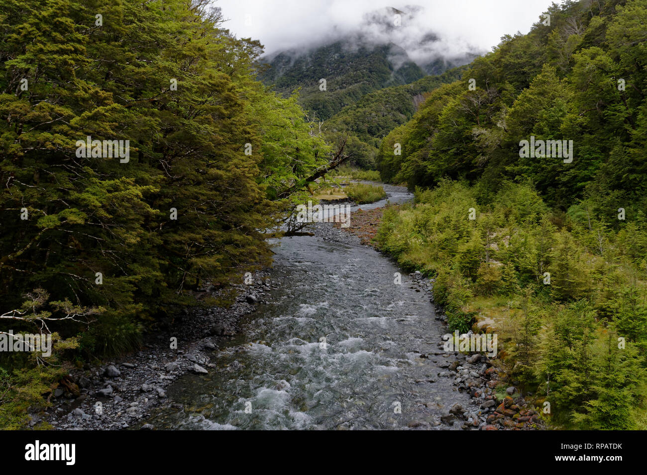 A meandering river with a misty hill behiind it - Stock Image