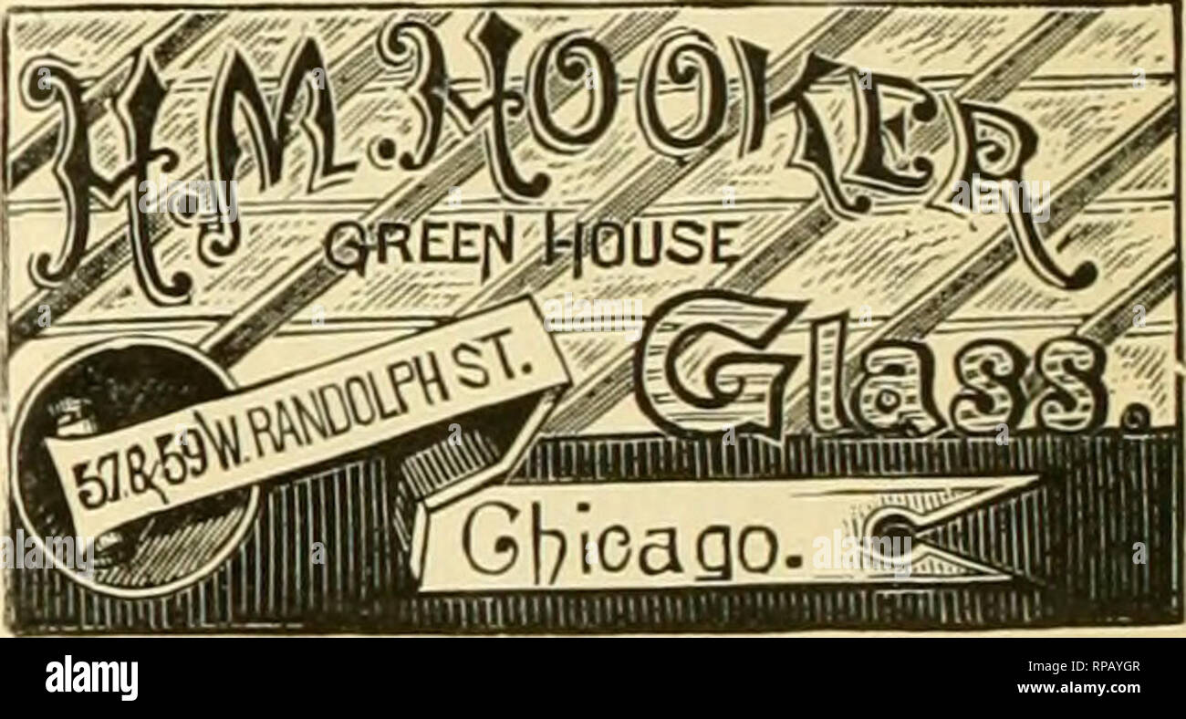 . The American florist : a weekly journal for the trade. Floriculture; Florists. k ^(ffi W^ ^%^, g3 to III W. Lake St. CHICAGO ILL 8IZK8 OF 8IN0LS AND DOUBLE THICK GLASS FOR GREENHOUSES. ALI^ G1.AZ1ERS' SUPPLIK3. ?V iVrlta for Lnteit Frio««. Ives' Putty MacMne. Patented Jan. 8, 1887. The best device ever invented for laying putty. With this you can make old leaky sash oerfectly tight without removing the glass. It will do the work of five men in bedding glass. Sent by Express on receipt of price, 13.00. J. H. IVES. Dambury. CoHiB. HUGHES' SOLUBLE FIR TREE OIL. FLORISTS AND NURSERYMEN SHOULD NO - Stock Image