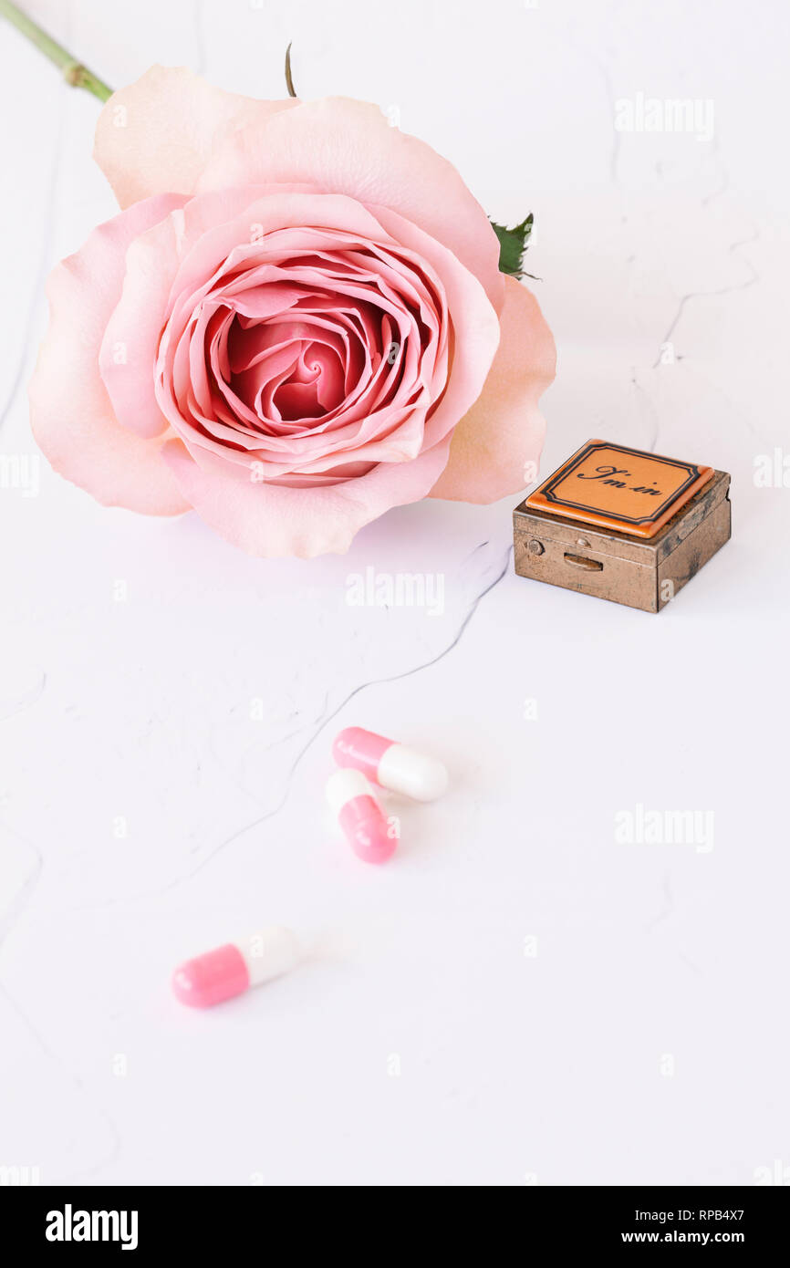 Single rose with square pill box and pink and white  tablets - Stock Image