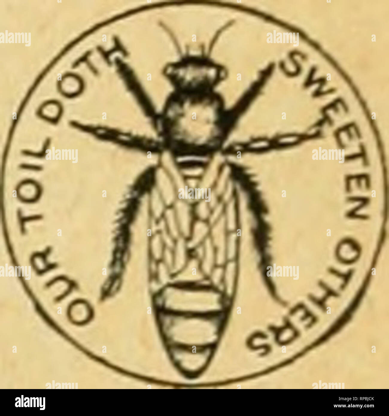 . American bee journal. Bee culture; Bees. QUEENS! Untested Queens, Italian, 60 cents. Tested, fl.OO. From honey-gathering stock. We keep in stock a full line of popular Apiarian Supplies. Catalog free. Apiaries-Glen cove, L.I. I. J. STRINGHAM, 105 U YM, NCW TODf, N. Y. Please mention. Bee Journal -when ?writing A HANDY TOOL-HOLDER! Sent by Express, for $1.50 ; or willi the Bee Journal one year—both for $2.00. Every Manufacturer, Miller, Carpenter. Cabinet Maker, Machinist. Wheelwright and Quarryman, Farmer, or any one using a grind- stone, should have one of these Tool-Holders. One boy can  - Stock Image
