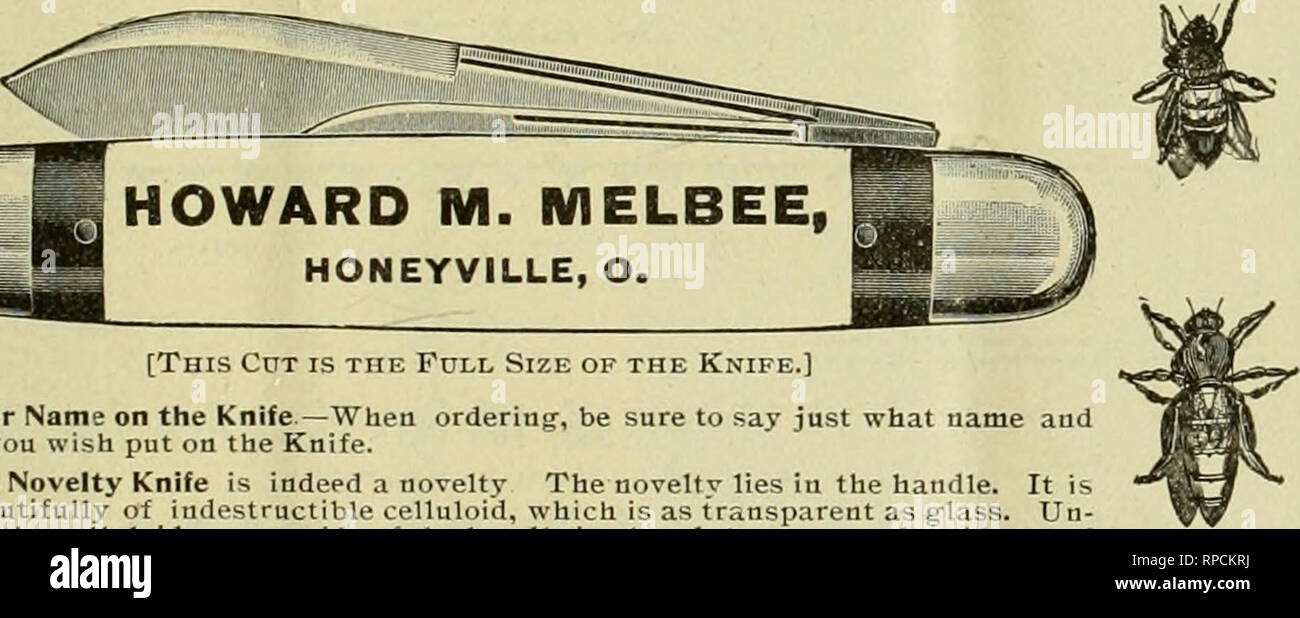 """. American bee journal. Bee culture; Bees. Journal for one year—both for only $1.40. It is a fine thing^ to preserve the copies of the Jour- nal as fast as they are received. If you have this """" Emerson"""" no further binding' is neces- sary. GEORGE W YORK & CO. 118 Michigan Street. CHICAGO. ILL. l'Iinois.rhe annual meeting'of the Northern Illinois Bee-Keepers' Association, will be held in the Court House in Freeport, [11., on Tuesdav and Wednesday, Oct. 16 and 17, 1900. All are cordially invited to attend. B. Kennedy, Sec. R. F. D. No. 5, Rockford, 111. Please tueution Bee Journal  - Stock Image"""