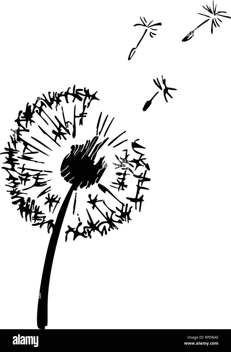 Dandelion plant silhouette. Contour suitable for cutting vinyl sticker. Vector outline illustration - Stock Vector