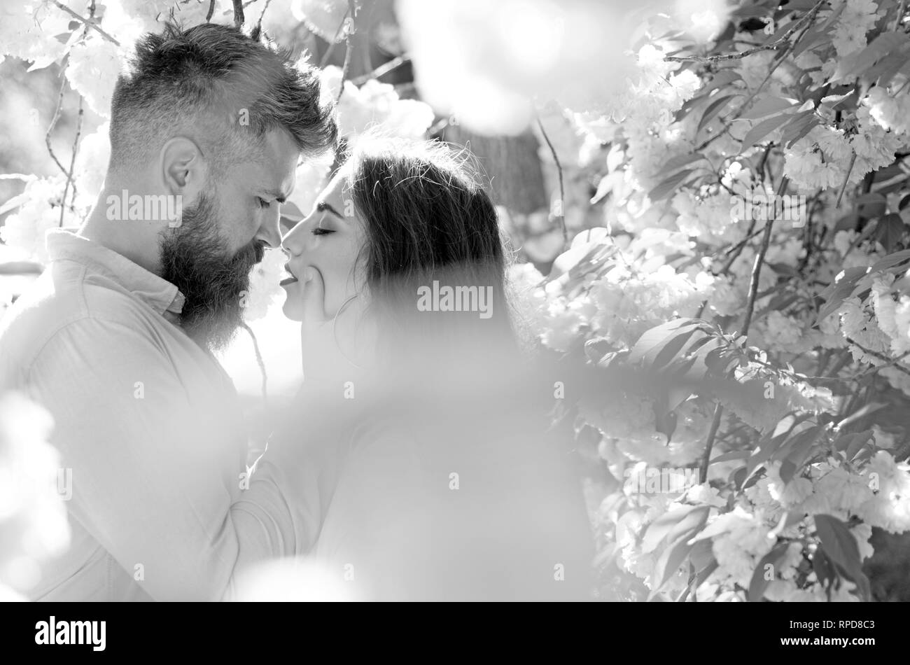 Passion and love concept. Man and woman kissing in blooming garden on spring day. Couple in love spend time in spring garden, flowers on background - Stock Image