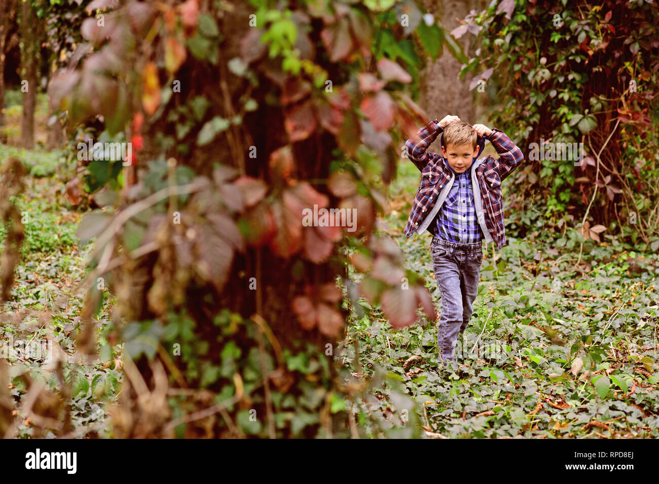 Lets just go walking. Little boy walking around in woods. Little boy walking into the wild. Enjoying the scenery and the wildlife - Stock Image
