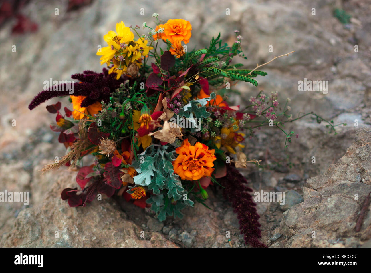 Wedding Bouquet In A Bright Autumn Style On The Background Of Stone Rocks Marigold Flowers Stock Photo Alamy