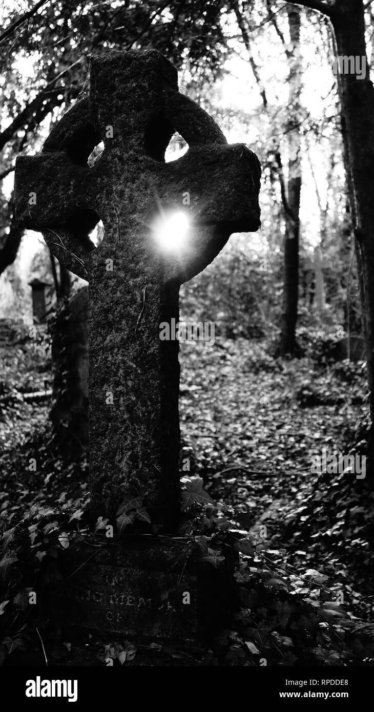 picture made on abandon cemetery in Barnes London - Stock Image